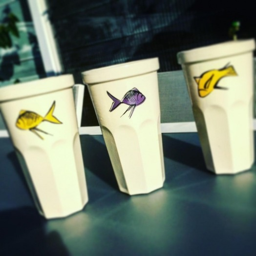 cups fishes